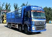 福田 欧曼ETX 6系重卡 290马力 8×4 仓栅载货车(BJ5313CCY-XC)