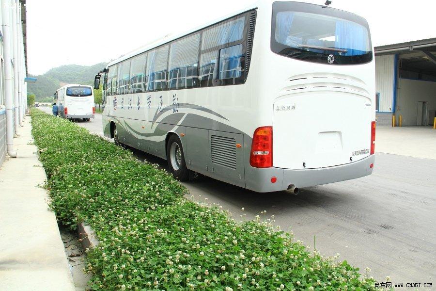 东风 风尚 245马力 24-49人 客车(EQ6113L4D)
