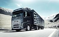 Volvo FH16-750 沃尔沃卡车拖车 沃尔沃FH16牵引车