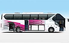 金龙客车 340马力 50座以上人 旅行客车(XMQ6125AYN5C)