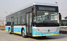 福田 欧辉 260马力 95人 城市客车(BJ6123C7NJB)