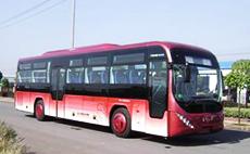 青年 336马力 27-68人 豪华旅游客车(JNP6120GLM)