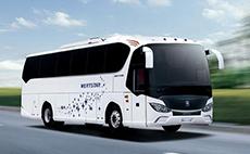 亚星 336马力 24-51人 公路客车(YBL6125H2QCJ)