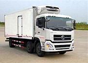 天龙 210马力 6×2 冷藏车(DFL5253XLCAX1B)