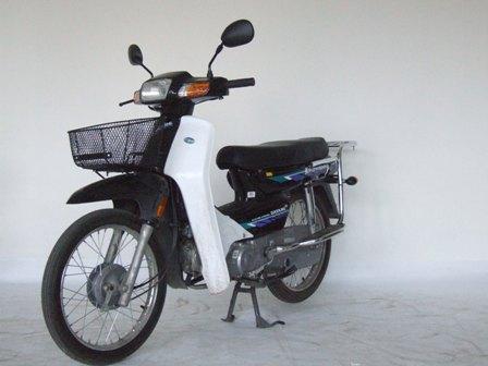 大阳两轮摩托车 dy100-c