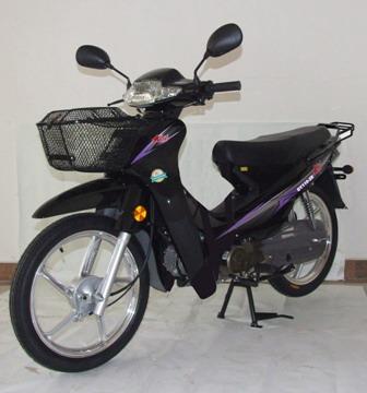 两轮摩托车;; 大阳 dy110 2e 两轮摩托车; dy100-e大阳牌两轮摩托车