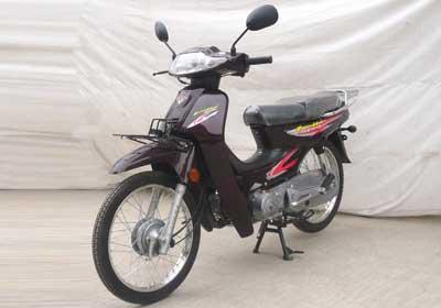 洛嘉_lj110-9c_两轮摩托车