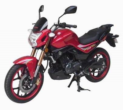 大运两轮摩托车 dy200-2